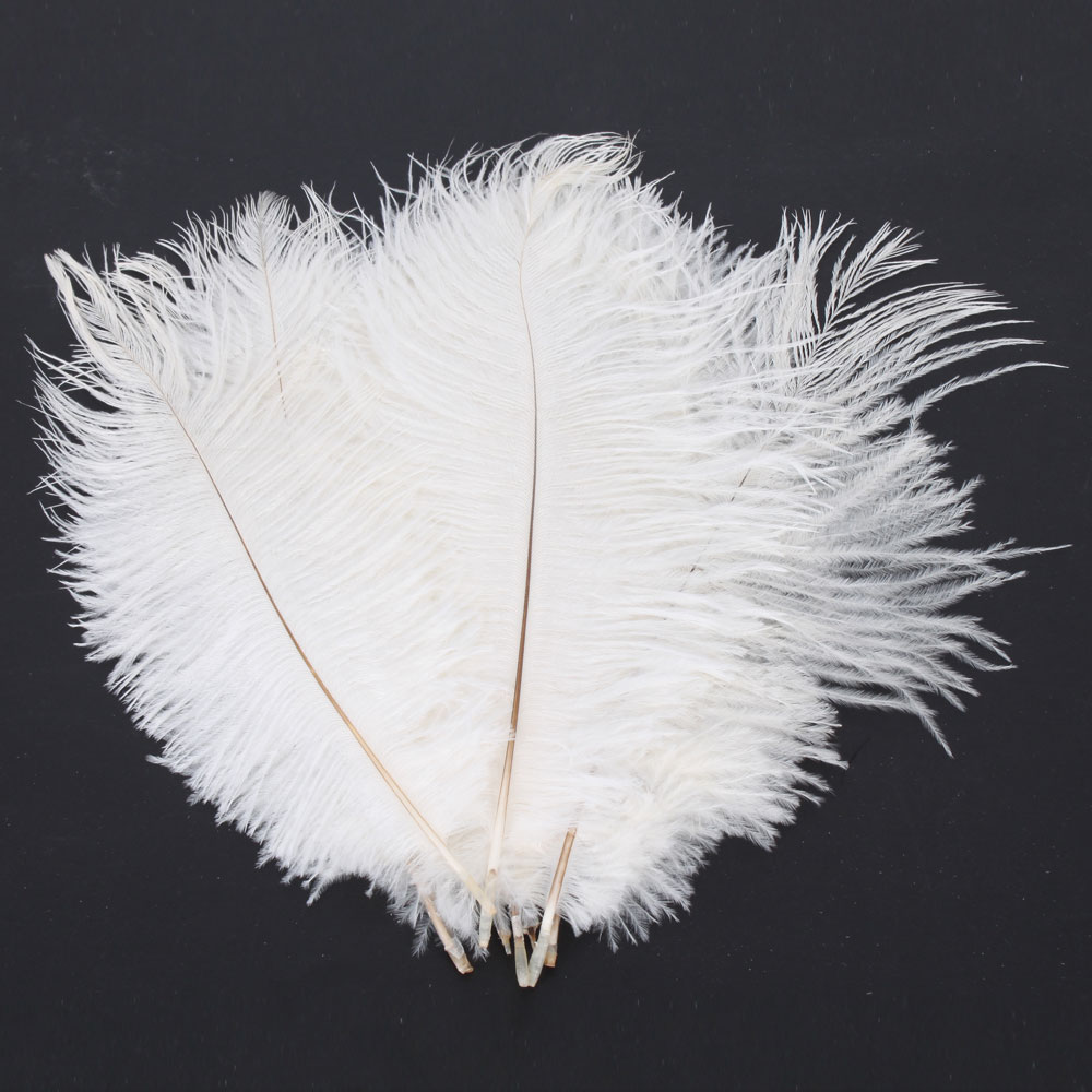 100 Feather Home Decor Best 20 Angel Wings Wall