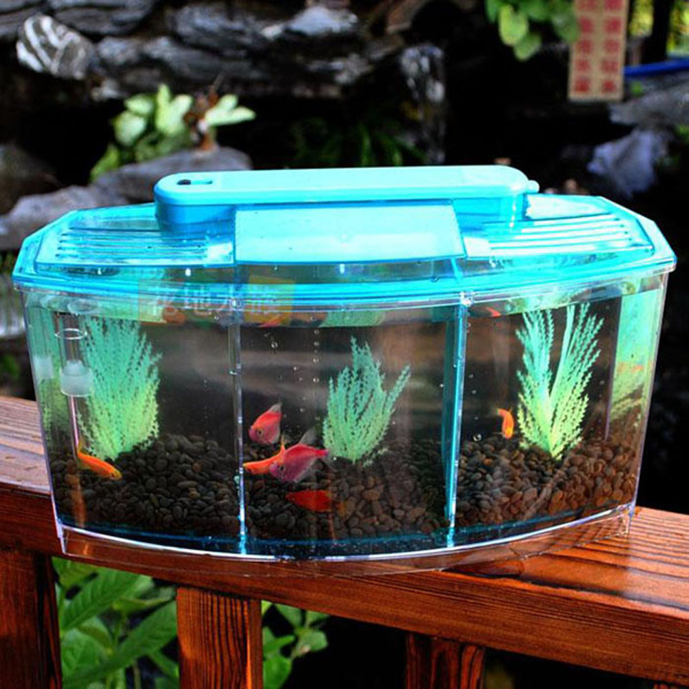 3 Compartment Acrylic Fish Tank Small Aquarium With Led